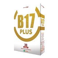B17 Plus