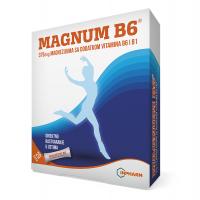Magnum B6